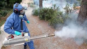 شركة رش مبيدات ببيشه