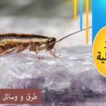 طرق و وسائل مكافحة البعوض