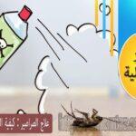 علاج الصراصير : كيفية القضاء على الصراصير للابد